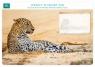 Planer tygodniowy Leopard in sand (WEK 602)