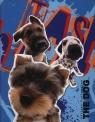 Segregator A5 The Dog