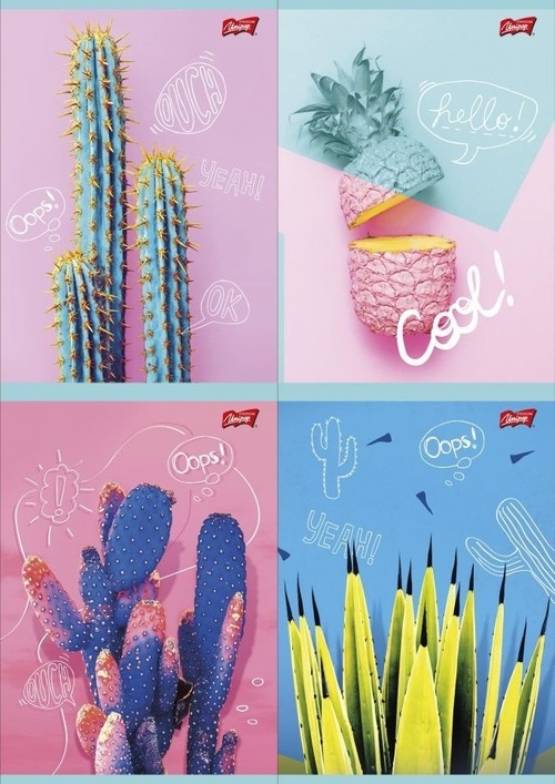 Zeszyt A5 w kratkę 60 kartek Cacti 10 sztuk mix