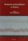 Badania poligraficzne w Polsce