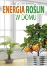 Energia roślin w domu Hoffmann Eva Katharina
