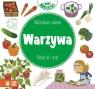 Maluszkowe zadania Warzywa