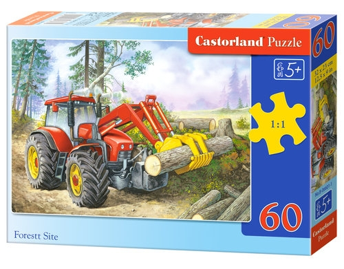 Puzzle 60: Forest Site (06601)