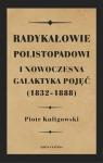 Radykałowie polistopadowi i nowoczesna galaktyka pojęć (1832-1888)