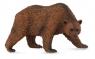 Niedźwiedź brązowy stojący L
