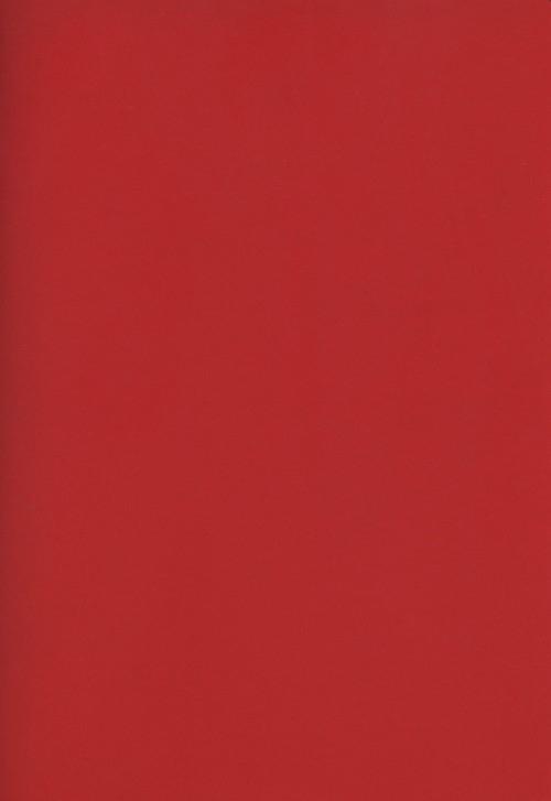 Zeszyt A4 Rainbow w kratkę 96 kartek czerwony