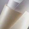 Papier ozdobny (wizytówkowy) Galeria Papieru iceland diamentowa biel A4 biały 220g