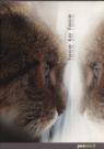 Zeszyt A5 w kratkę 60 kartek Kot