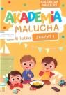 Akademia Malucha dla 6-latka z.1 praca zbiorowa