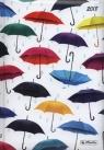 Kalendarz Szefa 2018 z motywem parasol