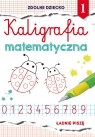 Kaligrafia matematyczna 1
