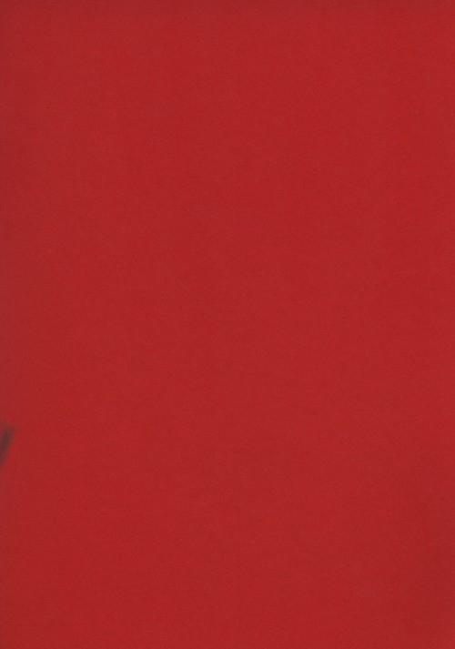 Zeszyt A5 Rainbow w kratkę 60 kartek czerwony