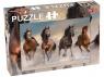 Puzzle 56: Wild Horses