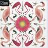 Karnet kwadrat z kopertą Greater Flamingo