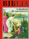 Biblia w obrazkach dla najmłodszych (mix) Praca Zbiorowa