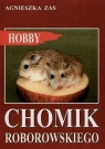 Chomik Roborowskiego Zas Agnieszka
