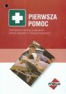 Pierwsza pomoc Obowiązkowe instrukcje postępowania podczas wypadków i w Panufnik Krzysztof, Matecka Violetta, Wojtasz Sławomir i inni