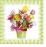 Serwetki TL325106 Wiosna