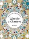 Witraże z Chartres. Książka do kolorowania