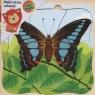 Puzzle drewniane Motyl (1569615)