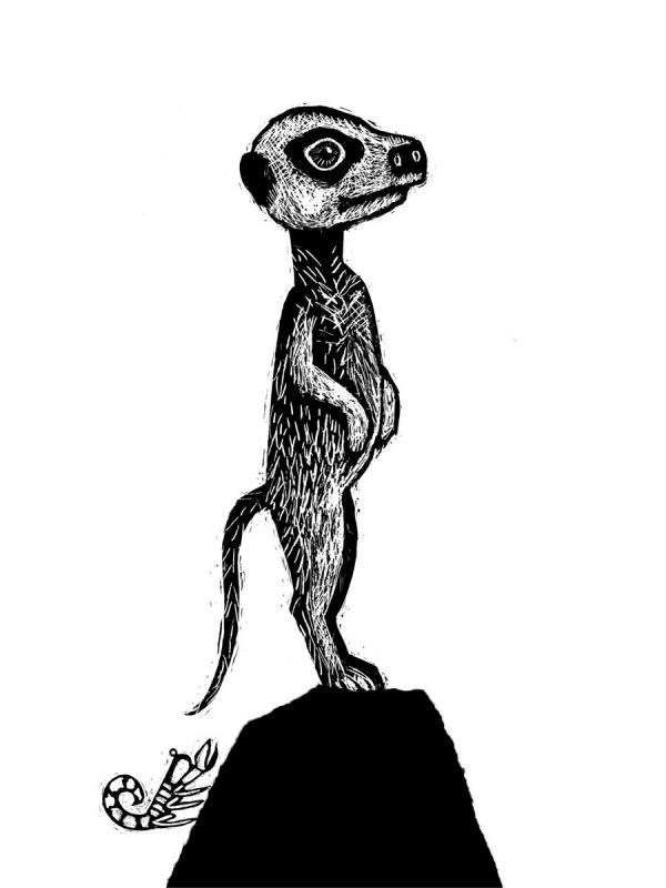 Zwierzaki cudaki Dumon Tak Bibi