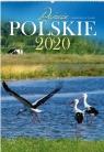 Kalendarz 2020 Reklamowy Pejzaże polskie RW01
