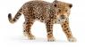 Jaguar (14769)