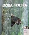 Dzika Polska Kłosowski Tomasz