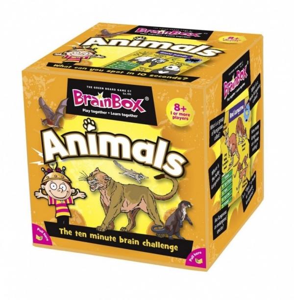 Gra Brainbox Animals