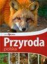 Piękna Polska Przyroda polska
