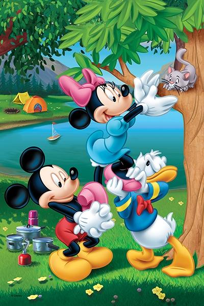 Puzzle 60: Piknik z Donaldem (17198)