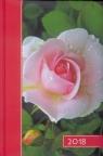 Terminarz 2018 B6 kolor - róża