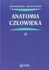 Anatomia człowieka Tom 4 Bochenek Adam, Reicher Michał