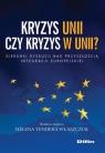 Kryzys Unii czy kryzys w Unii?
