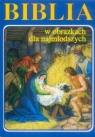 Biblia w obrazkach dla najmłodszych (niebieska)