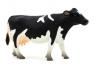 ANIMAL P. Krowa rasy holsztyńskiej (F7062)