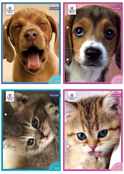 Wkłady do segregatora A5 Sweet Pets 8 kartek z kolorowankami mix