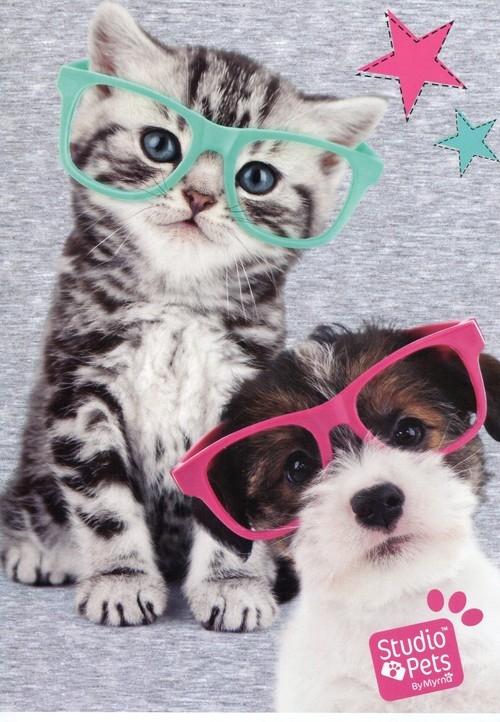 Zeszyt A5 Studio Pets w kratkę 32 kartki