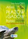 Atlas płazów i gadów Polski Status ? rozmieszczenie ? ochrona z Głowaciński Zbigniew, Sura Piotr