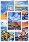Brulion A4 Top-2000 w kratkę 96 kartek Bon voyage mix