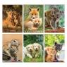 Zeszyt Herlitz A5/16k kratka - Animals (9583048)