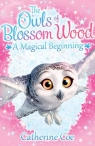 The Owls of Blossom Wood: A Magical Beginning Coe Catherine