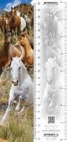 Zakładka 3D Konie