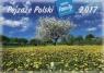 Kalendarz 2017 WL 03 Pejzaże Polski rodzinny