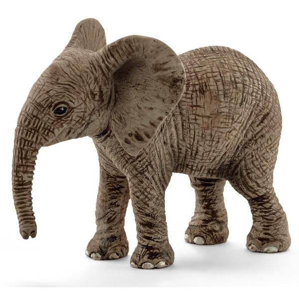 Młody słoń afrykański (14763)