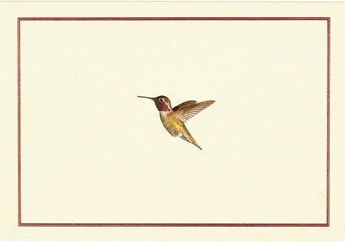 Papeteria Mini Koliber w locie