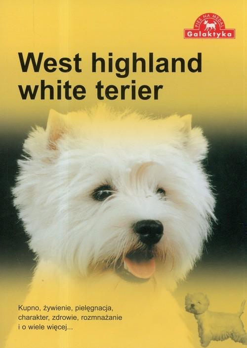 West highland white terier
