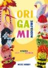 Origami modułowe Książka uczy, bawi, rozwija Wodzyńska Zofia