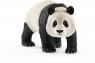 Panda wielki samiec - 14772