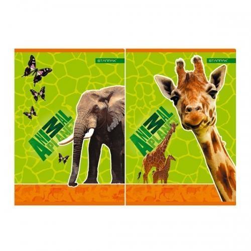 Zeszyt A5/32K kratka Animal Planet 10szt